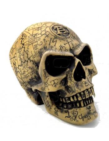 Omega Alchemists Skull Resin Statue Mythic Decor  Dragon Statues, Angels, Myths & Legend Statues & Home Decor