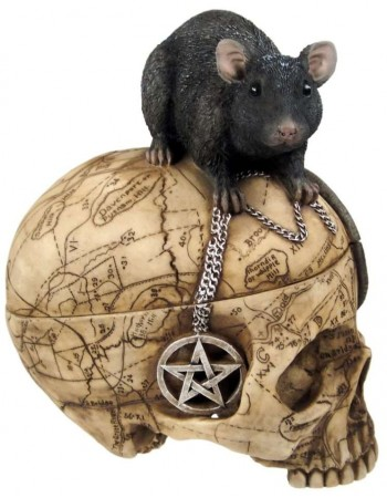 Salem Witch Skull and Mouse Box Mythic Decor  Dragon Statues, Angels, Myths & Legend Statues & Home Decor