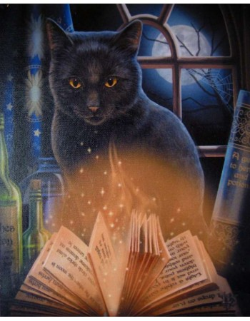 Bewitched Black Cat Canvas Print by Lisa Parker Mythic Decor  Dragon Statues, Angels & Demons, Myths & Legends |Statues & Home Decor