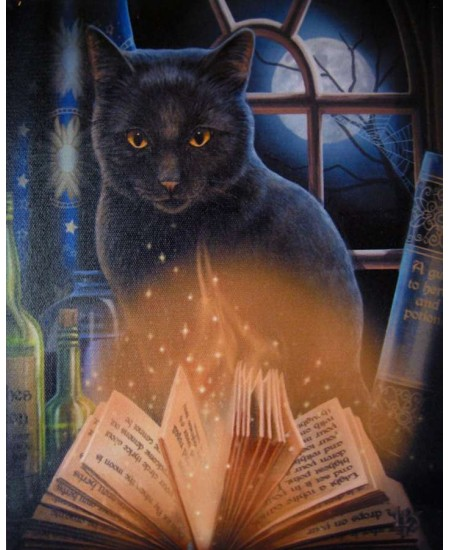 Bewitched Black Cat Canvas Print by Lisa Parker at Mythic Decor,  Dragon Statues, Angels & Demons, Myths & Legends |Statues & Home Decor