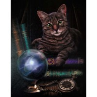 Fortune Teller Cat Canvas Print by Lisa Parker