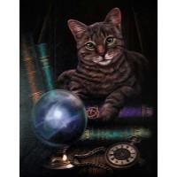 Fortune Teller Cat Canvas Print