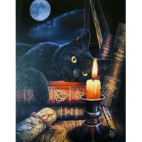 Witching Hour Black Cat Canvas Print by Lisa Parker